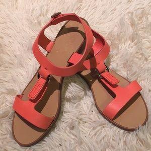 Ferragamo Coral Flat Sandals